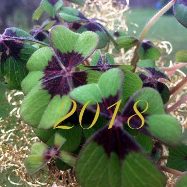 Neujahrsempfang: Trauer der Kinder verstehen